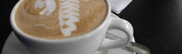 Maysoori Coffee